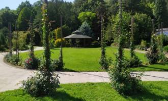 botanicka-zahrada-univerzity-pavla-jozefa-safarika84592238.jpg