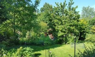 zahrada1-pohlad5-uprava.jpg