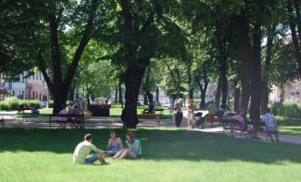 ivot-v-parku_menšia.jpg